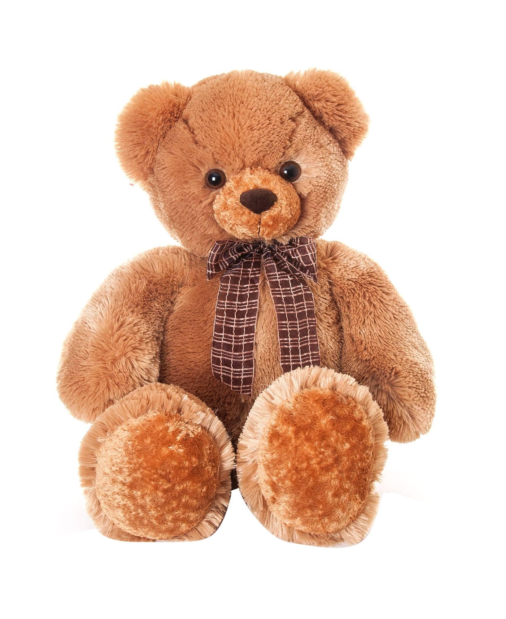 уделим картинки про мягких медведей его